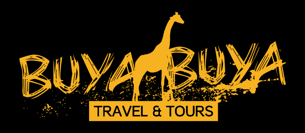 Kruger Park Transfers, Safaris and Tours